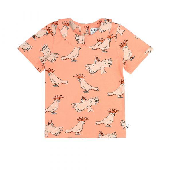 Parrot T-shirt Collar