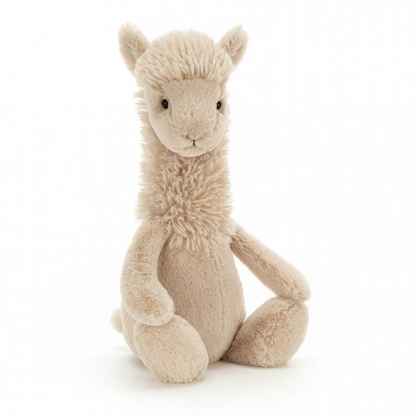 Bashful Llama / Medium