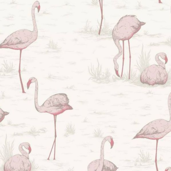 Behangpapier / Flamingos